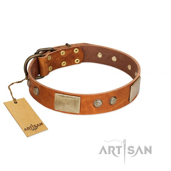 """Ancient Treasures"" FDT Artisan Tan Leather Great Dane Collar with Antiqued Plates and Studs"