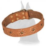 """Spring Mood"" Decorated Leather Collar with Brass Studs"