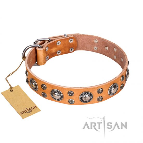 'Extra Sparkle' FDT Artisan Handcrafted Tan Great Dane Leather Dog Collar
