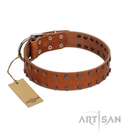 """Star Light"" Stylish FDT Artisan Tan Leather Great Dane Collar with Silver-Like Studs"