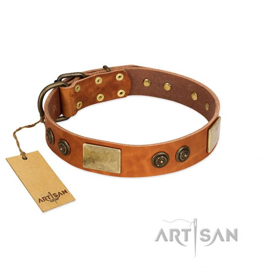 """Bronze Century"" FDT Artisan Tan Leather Great Dane Collar with Plates and Brooches with Cool Ornament"