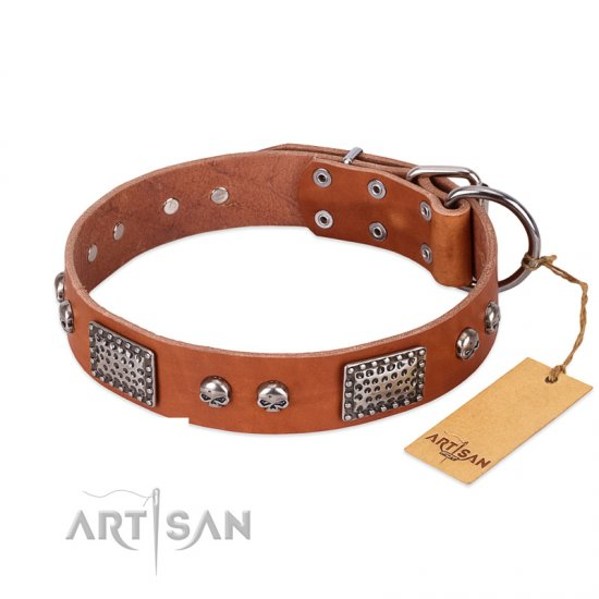 """Sparkling Skull"" FDT Artisan Tan Leather Great Dane Collar with Old Silver Look Plates and Skulls"