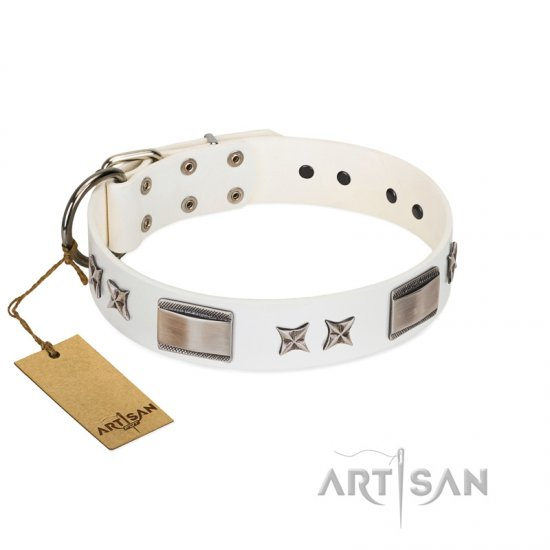 """Bling-Bling"" FDT Artisan White Leather Great Dane Collar with Sparkling Stars and Plates"