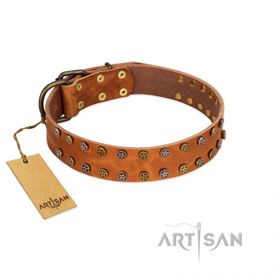 """Walk and Shine"" FDT Artisan Tan Leather Great Dane Collar with Antiqued Studs"