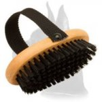 Comfy Great Dane Brush for Everyday Grooming 'Brush & Go'