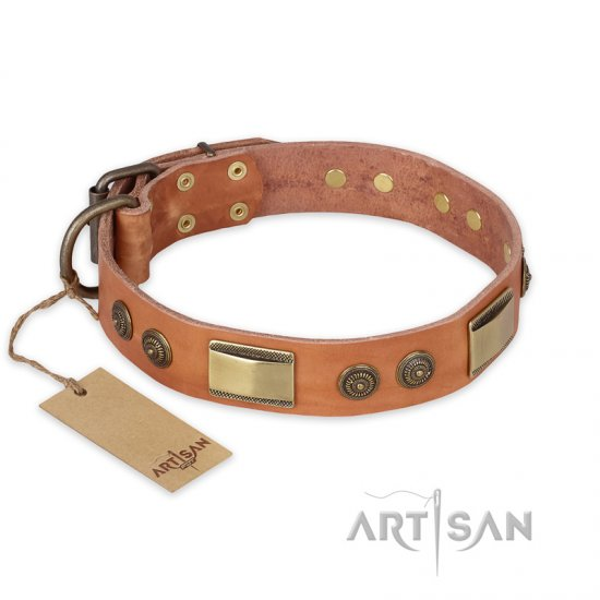 """Lost Desert"" FDT Artisan Leather Great Dane Collar with Brass Decorations"