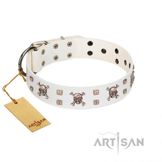 """Skull Island"" Premium Quality FDT Artisan White Designer Great Dane Collar with Crossbones and Studs"