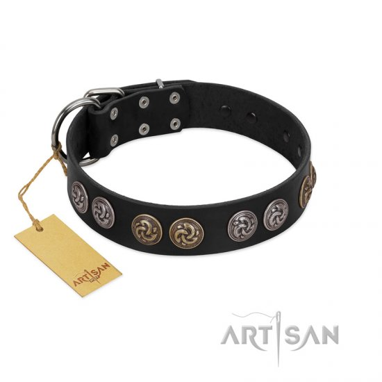 """Mister Exclusive"" Designer FDT Artisan Black Leather Great Dane Collar with Medallions"