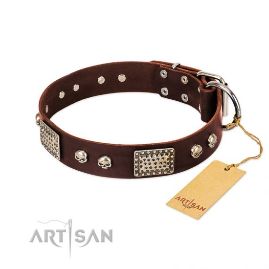 """Pirate Skull"" FDT Artisan Brown Leather Great Dane Collar with Old Silver Look Plates and Skulls"
