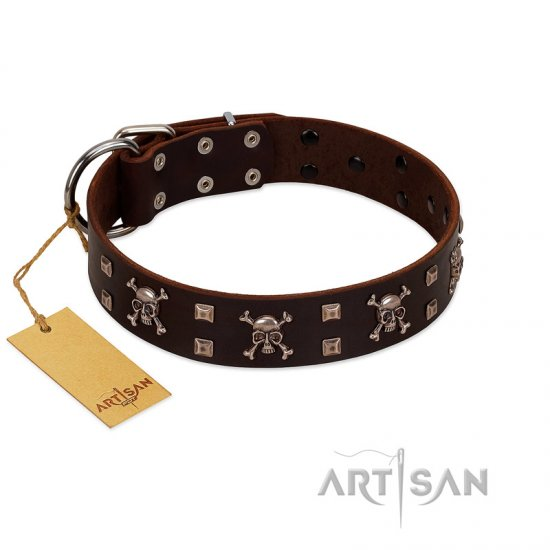 """Menacing Allure"" FDT Artisan Brown Leather Great Dane Collar Embellished with Silvery Crossbones and Square Studs"