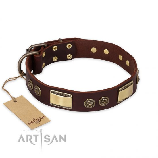 """Golden Stones"" FDT Artisan Brown Leather Great Dane Collar with Old Bronze Look Plates and Circles"