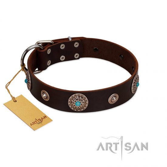 """Magic Stones"" FDT Artisan Brown Leather Great Dane Collar with Chrome Plated Brooches and Studs"