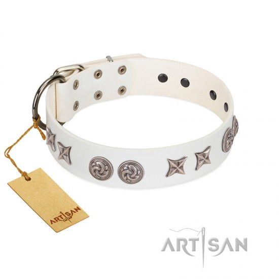 """Galaxy Hunter"" FDT Artisan White Leather Great Dane Collar with Engraved Brooches and Stars"