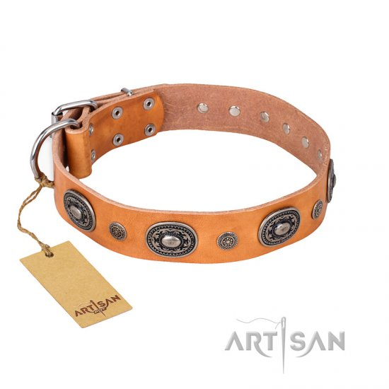"""Twinkle Twinkle"" FDT Artisan Incredible Studded Tan Leather Great Dane Collar"