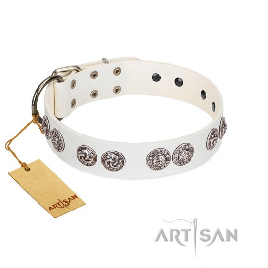 """Eye Candy"" Appealing FDT Artisan White Leather Great Dane Collar with Chrome Plated Medallions"