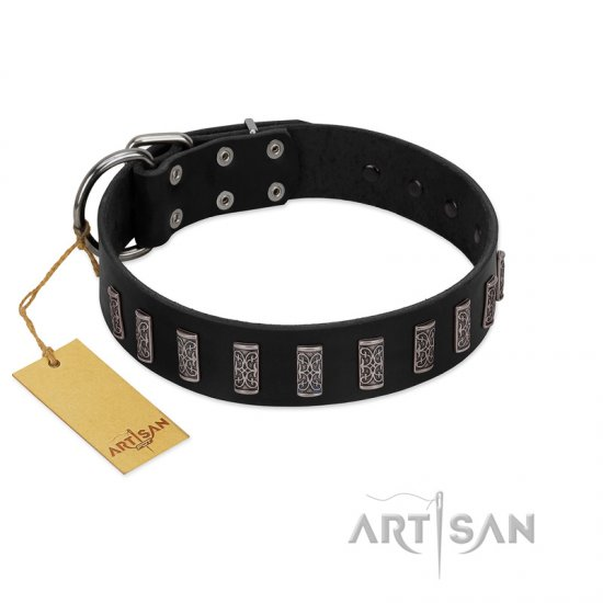 """Black Prince"" Handmade FDT Artisan Black Leather Great Dane Collar with Silver-Like Adornments"
