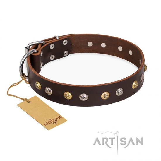 """Golden""n""Silver Luxury"" FDT Artisan Leather Great Dane Collar with Engraved Studs"