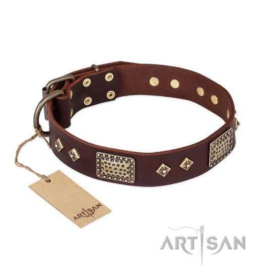 """Loving Owner"" FDT Artisan Decorated Leather Great Dane Collar with Plates and Studs - Click Image to Close"
