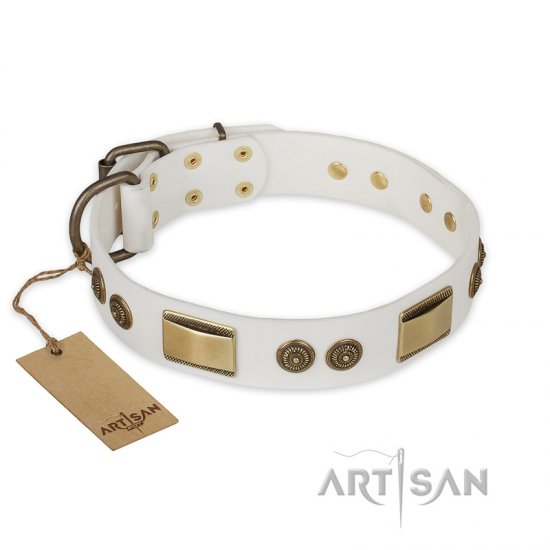 """Golden Avalanche"" FDT Artisan White Leather Great Dane Collar with Old Bronze Look Plates and Circles"