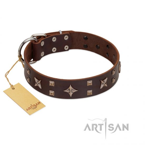 """Stars in Sands"" Modern FDT Artisan Brown Leather Great Dane Collar with Studs and Stars"