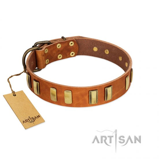 """Olive Slice"" FDT Artisan Tan Leather Great Dane Collar with Engraved and Smooth Plates"