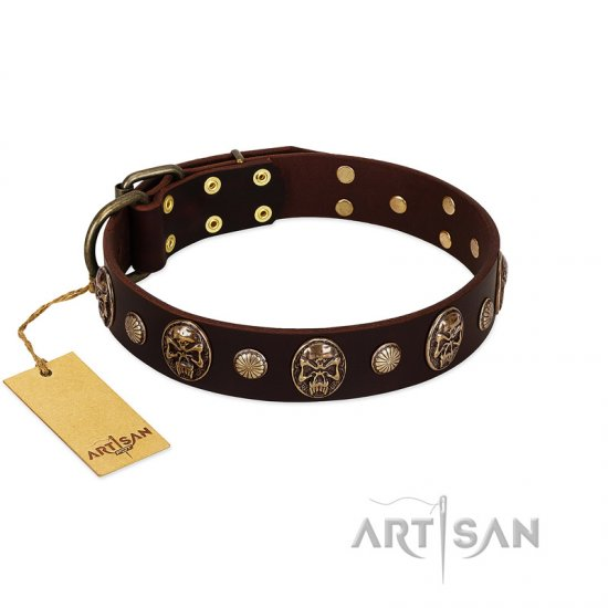 """Snazzy Paws"" FDT Artisan Brown Leather Great Dane Collar Adorned with Conchos and Medallions"