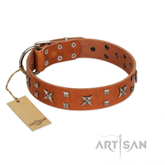 """Faraway Galaxy"" FDT Artisan Tan Leather Great Dane Collar Adorned with Stars and Squares"
