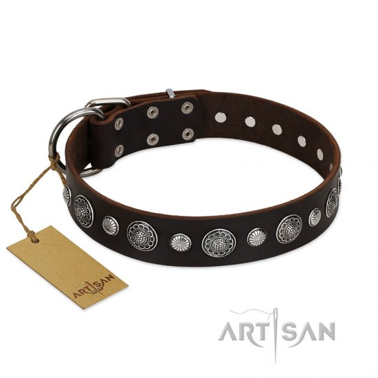 """Victory Ode"" FDT Artisan Brown Leather Great Dane Collar with Silver-like Plated Decorations"