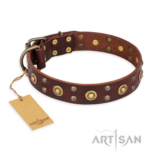"""Caprice of Fashion"" FDT Artisan Brown Leather Great Dane Collar with Round Decorations"