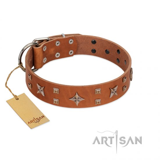 """Dreamy Gleam"" FDT Artisan Tan Leather Great Dane Collar Adorned with Stars and Squares"