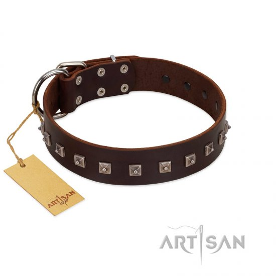 """Kingly Grace"" FDT Artisan Brown Leather Great Dane Collar with Silver-like Dotted Studs - Click Image to Close"
