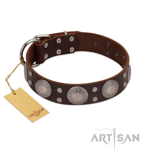 """Imperial Legate"" FDT Artisan Brown Leather Great Dane Collar with Big Round Plates"