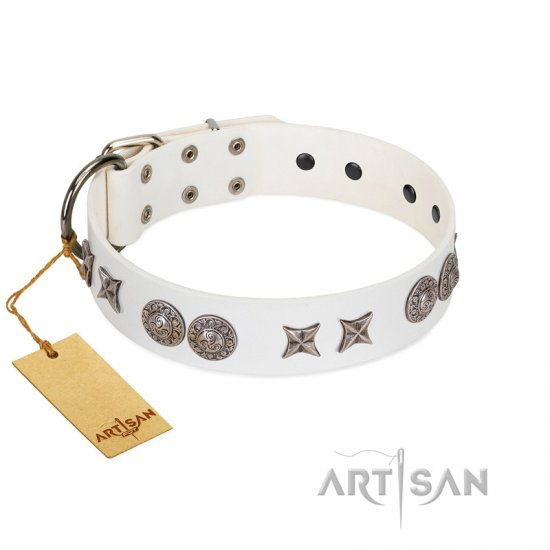 """Seventh Heavens"" FDT Artisan White Leather Great Dane Collar with Chrome-plated Stars and Engraved Brooches"
