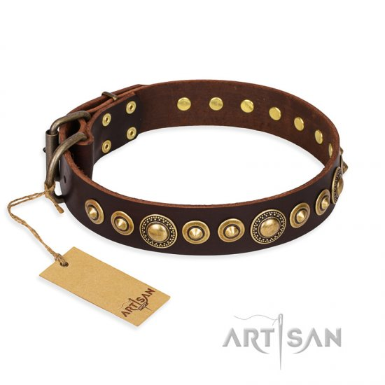 """Ancient Warrior"" FDT Artisan Fancy Leather Great Dane Collar with Old-Bronze Plated Decorations"