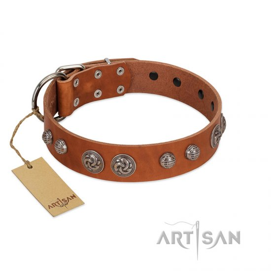 """Era Infinitum"" FDT Artisan Tan Leather Great Dane Collar Adorned with Chrome-plated Circles"