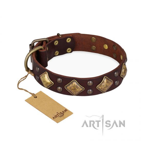 """Golden Square"" FDT Artisan Brown Leather Great Dane Collar with Large Squares"
