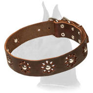 """Flower Blues"" Punched Leather Collar for Great Dane Walking in Style"