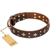 'High Fashion' FDT Artisan Embellished Brown Leather Great Dane Collar