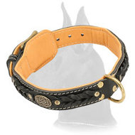 Decorated Leather Great Dane Collar for basic training