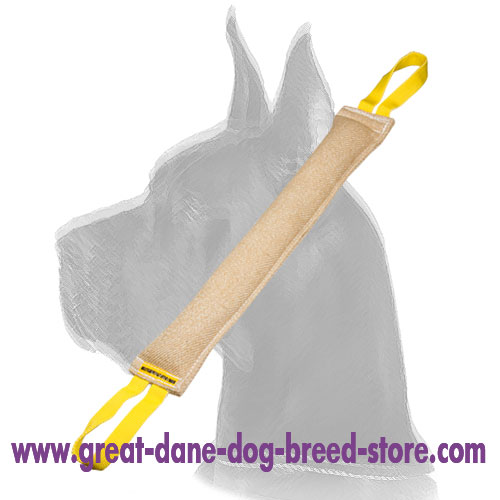 Durable Training Jute Bite Tug for Puppy Joy for Great Dane