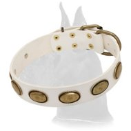 Exclusive Leather White Collar for Great Dane Breed