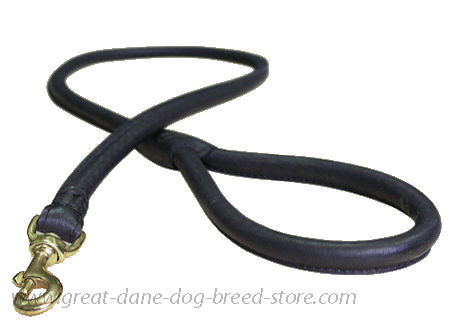 Matching Rolled Leather Dog Lead for Great Dane