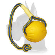"""Go and Get it"" Foam Water Ball on Rope - Medium 3 inch in diameter"