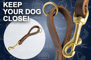 Leather Leash for Great Dane