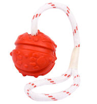 Fun Ball on a Rope 2 3/4 inches (7 cm) for Great Dane