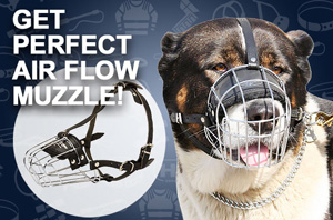 Wire Basket Muzzle