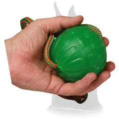 Interactive Special rubber Toy for Chewing