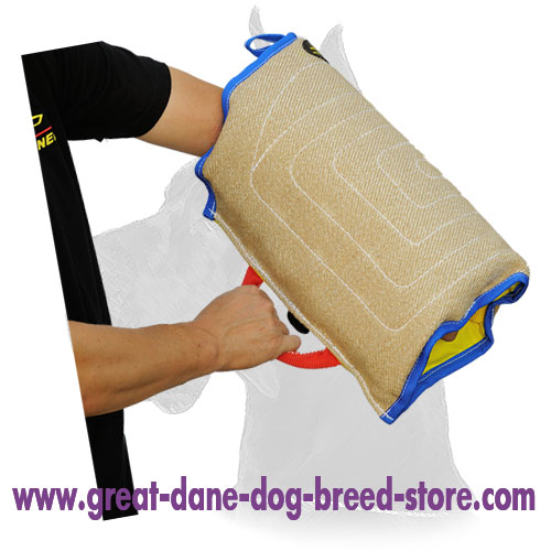 Puppy Training Bite Sleeve of Safe Jute