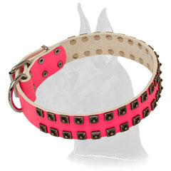 Pink  Leather Great Dane Collar
