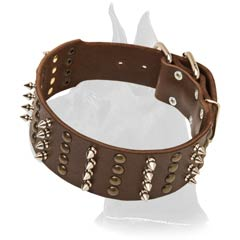 Spiked and Studded Collar